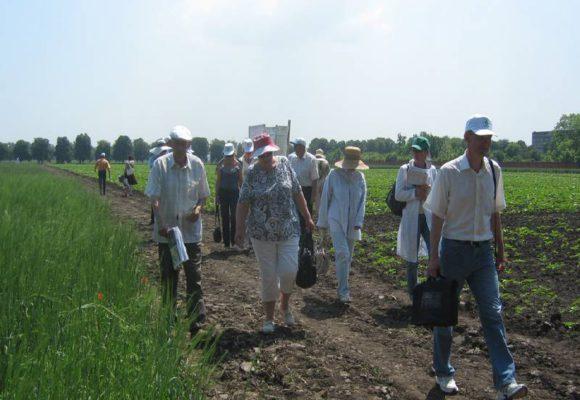 День поля. Июнь, 2009 г.
