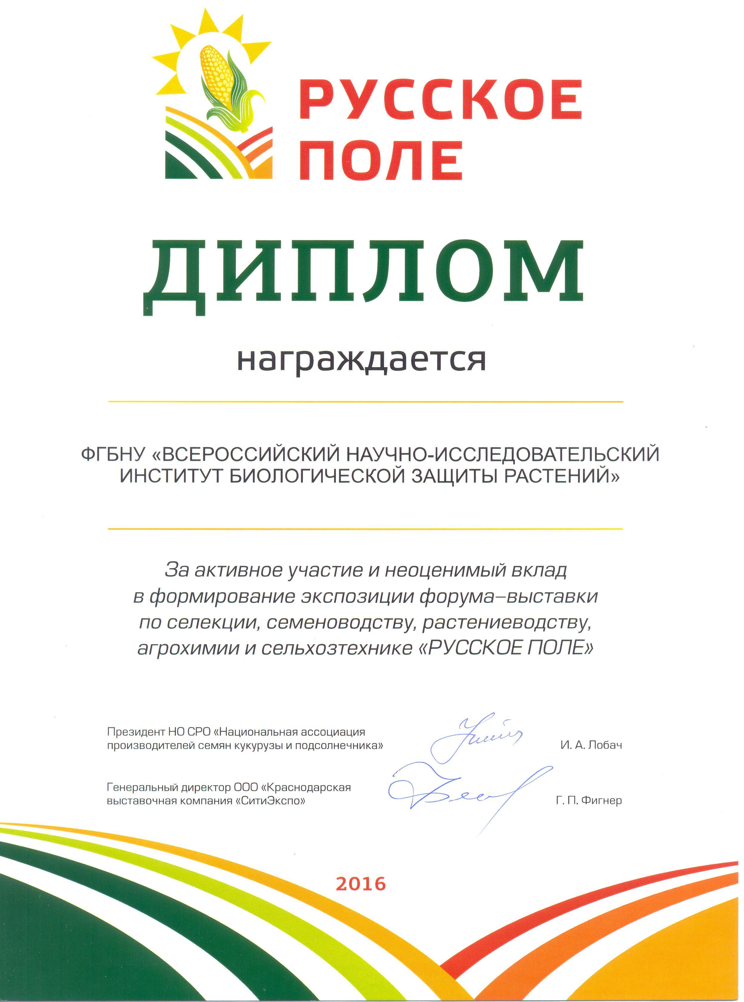 дипломы 015