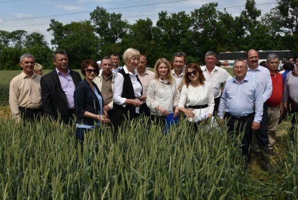Практический семинар «Защита посевов озимой пшеницы, сои, подсолнечника от сорной растительности, болезней и вредителей»