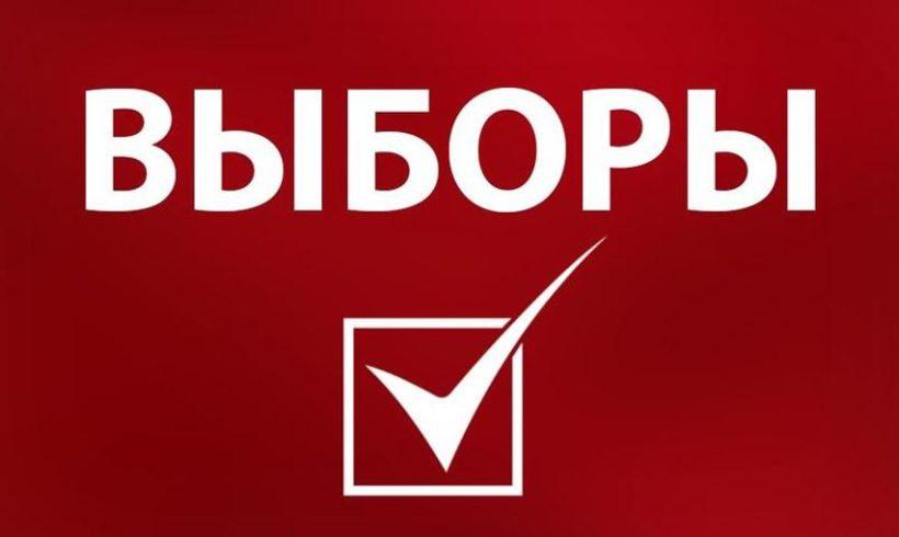 Объявление о процедуре выдвижения кандидатов на должность директора ФГБНУ ВНИИБЗР